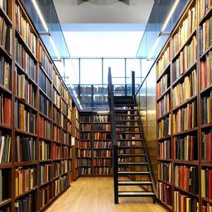 Библиотеки Арзгира