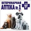 Ветеринарные аптеки в Арзгире